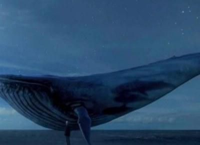 Blue Whale challenge, chennai schools