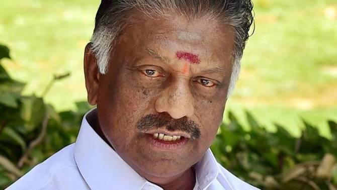 deputy cm o.panneerselvam, aiadmk, tamilnadu government, dmk, m.k.stalin, chennai high court, gutkha, ops faction 11 mla's disqualification case
