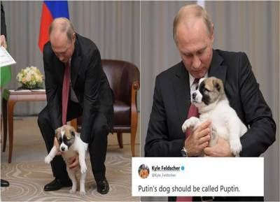 vladimir putin, russia,