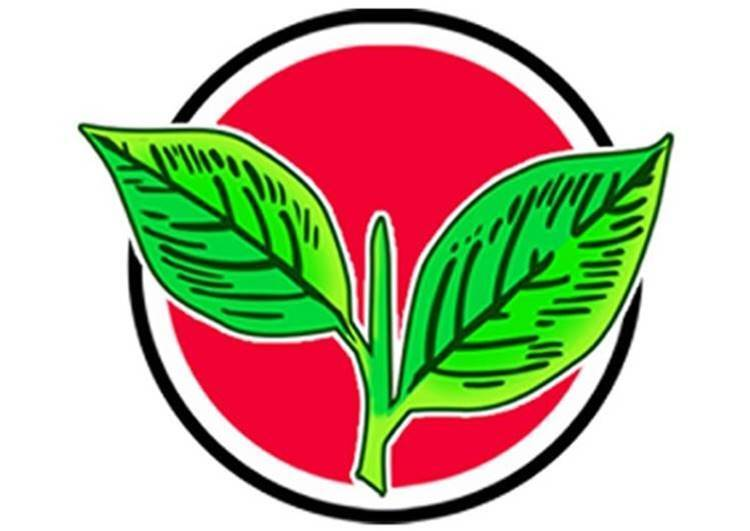 election commission of india, two leaves symbol, aiadmk, tamilnadu government, t.t.v.dhinakaran, deputy cm o.panneerselvam, cm edappadi palaniswami, vk sasikala
