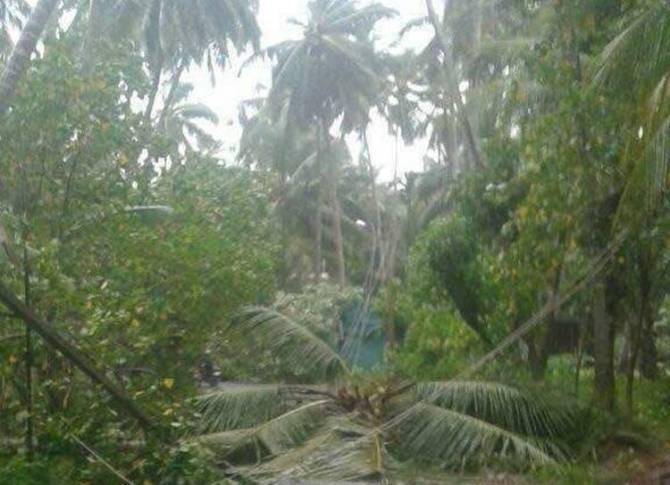heavy rain, Cyclone Ockhi, tamilnadu