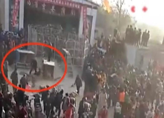 tiger videos, tiger escapes circus, tiger attacks people video, tiger attacking children video
