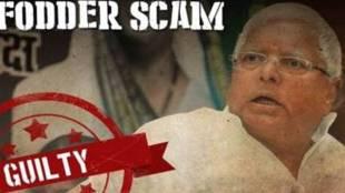 Fodder scam verdict Live Updates