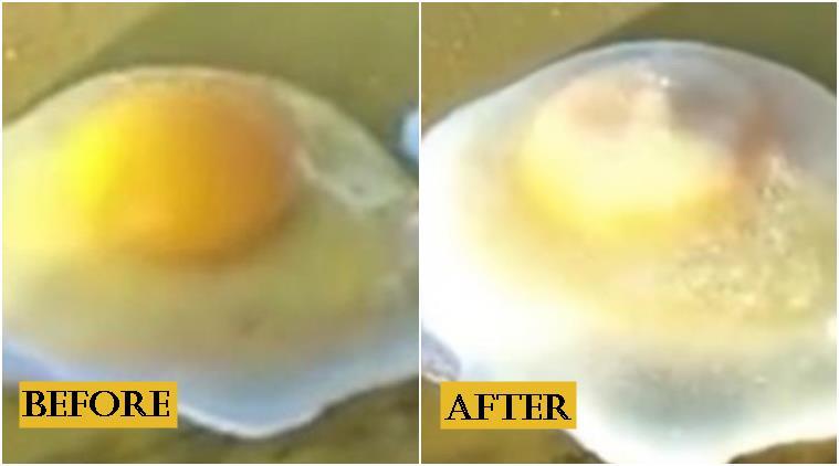 frozen-egg_china_759_yt