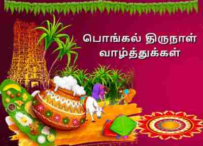 Pongal 2019 Wishes