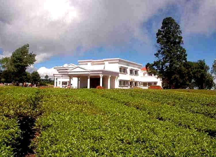 kodanad estate case sayan madras high court - கோடநாடு கொலை, கொள்ளை வழக்கு - சயன் மீதான குண்டர் சட்டம் ரத்து