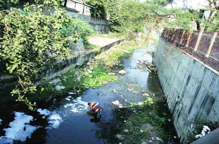 waterbody encroachers, Madurai HC, High court