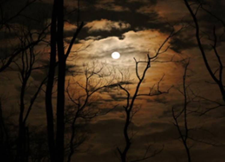 tamil thriller stories - சிறுகதை: அண்ணே வலிக்குதுண்ணே ....!