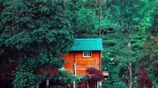Kotagiri Summer Trip