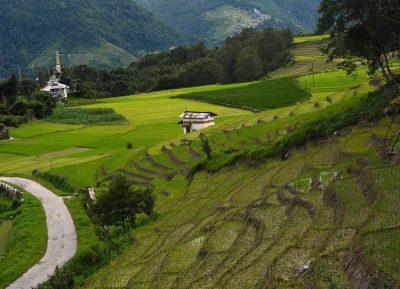 Summer Trip 2019: இயற்கையை நேசிப்பவர்களின் உன்னத காதலன் – ஜிரோ!