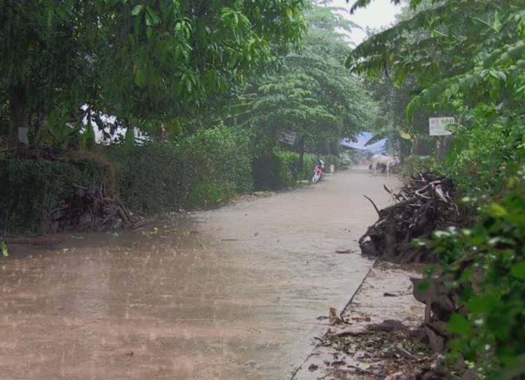 Chennai weather latest updates, Chennai weather today latest updates southwest monsoon heavy rainfall alerts