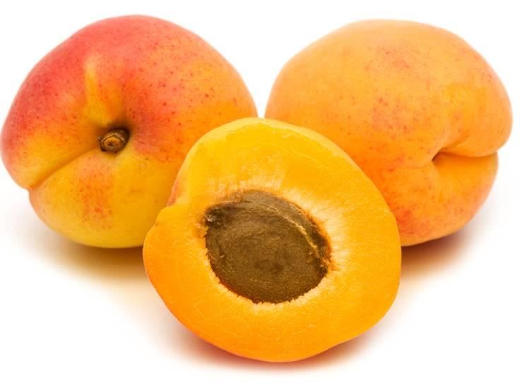 Diet Tips : High fibre fruit Apricot benefits
