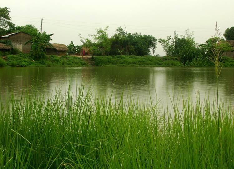 Chennai weather update south Tamil Nadu gets heavy rainfall alert