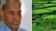 Union Budget 2019 Zero Budget Natural Farming, Subhash palekar
