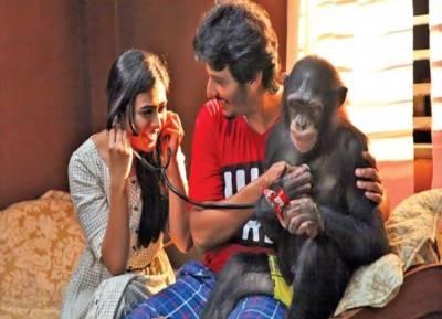 Jiiva starrer Gorilla movie review: ஜீவாவுக்கு கை கொடுத்ததா 'கொரில்லா'?