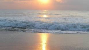 Tamil Nadu Beaches: Top 5 Beaches in Tamil Nadu, Popular Tamil Nadu Beaches, Famous Beaches in Tamil Nadu - தமிழகத்தில் நீங்கள் கட்டாயம் செல்ல வேண்டிய 5 கடற்கரைகள்!