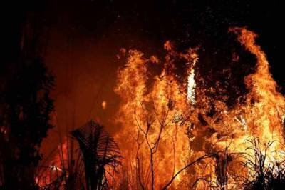 amazon forest fire, amazon fire, அமேசான் காடுகள், அமேசான் காட்டுத் தீ, அமேசான் காட்டுத் தீ படங்கள், brazil president on amazon fires, fires in the amazon, amazon rainforest fires, amazon fire photos