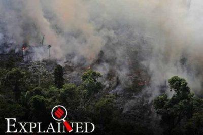 amazon forest fire, amazon fire, brazil president on amazon fires, fires in the amazon, அமேசான் காடுகளில் தீ விபத்து, அமேசான் காடுகள் அழிப்பு, amazon rainforest fires, amazon fire photos,Counting Amazon fires, assessing amazon forest lost