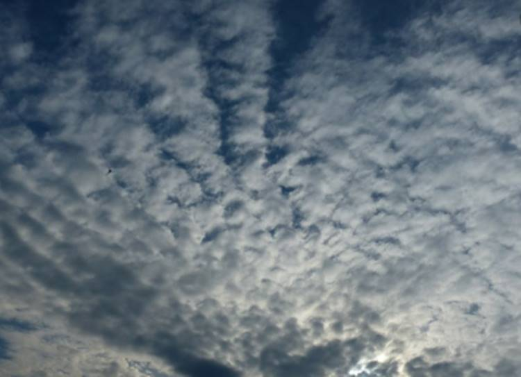 weather today rain in tamil nadu chennai rains tamil nadu weatherman - 24 மணி நேரத்தில் 820மி.மீ....வரலாற்றில் இல்லாத அளவுக்கு மழை! - எச்சரிக்கும் தமிழ்நாடு வெதர்மேன்