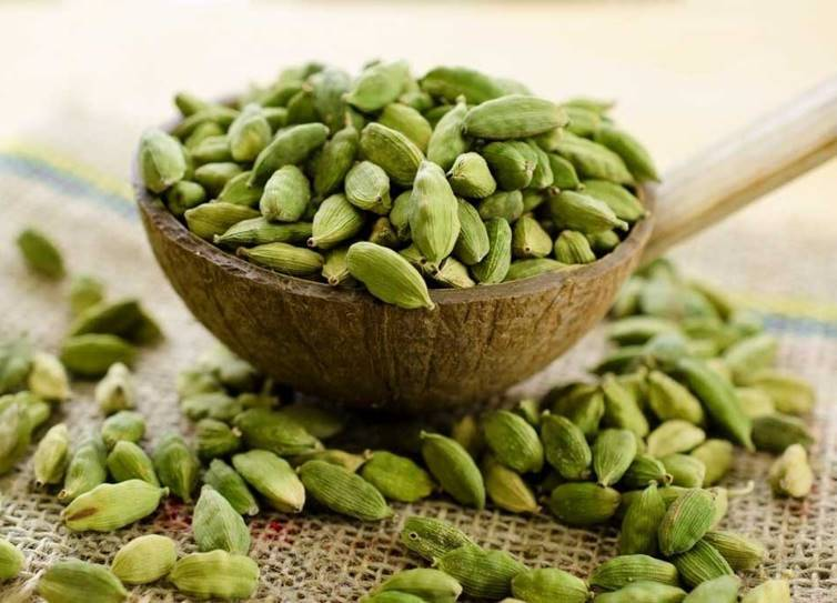 weight loss diet tips fenugreek seeds cardamom benefits