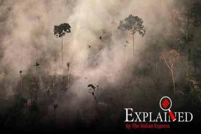 Amazon rainforest fire, Amazon forest fire, amazon fire, Brazil president on Amazon fires, Fires in the Amazon, Amazon rainforest fires, amazon fire photos