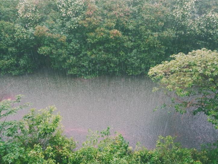 Chennai weather latest updates heavy rain alert, northeast monsoon, Chennai weather latest updates heavy rain alert