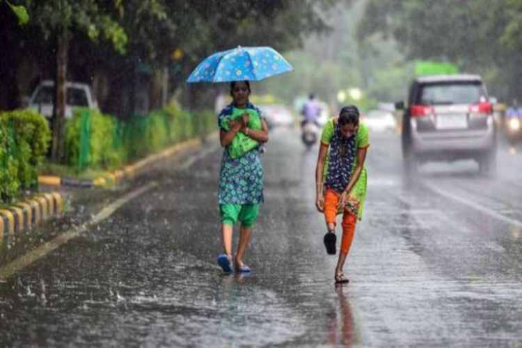 Weather Today Chennai, Tamil Nadu Rain News, வானிலை, வானிலை அறிக்கை, இன்றைய வானிலை