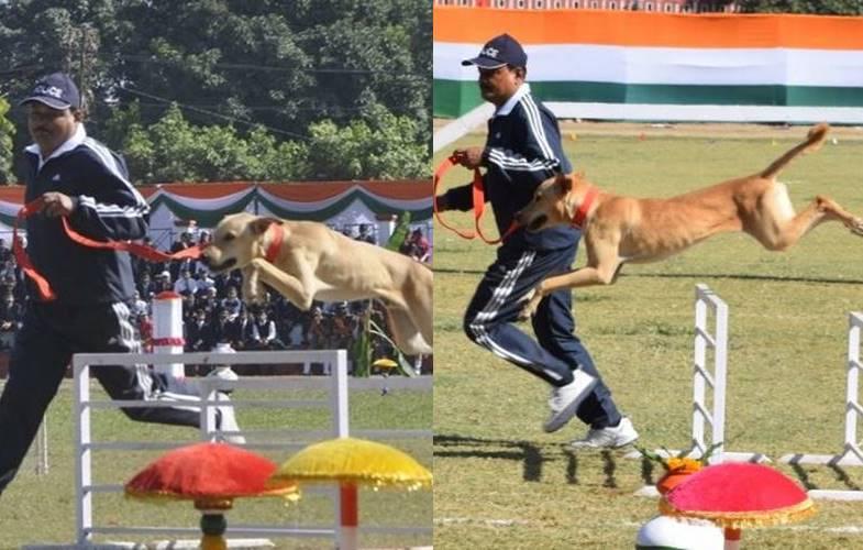 Uttarakhand Police trains stray dog