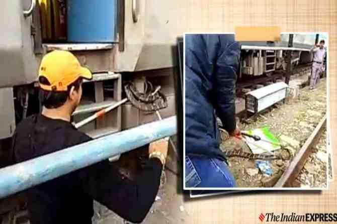 snakes on train, king cobra on train, king cobra on train in Uttarakhand, snake rescue, ரயிலில் ராஜநாகம் பாம்பு, வைரல் வீடியோ, king cobra, king cobra rescue, உத்தரக்காண்ட் ரயிலில் ராஜநாகம், snake rescued from train wheels, kathgodam railway station, viral videos, Tamil indian express