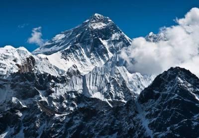 Wild Himalaya book review