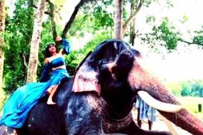 Actress Sakshi Agarwal, Sakshi Agarwal bathing with Elephant, Sakshi Agarwal sitting on Elephant, சாக்ஷி அகர்வால் யானையுடன் குளியல், Sakshi Agarwal bathing in elephant shower, நடிகை சாக்ஷி அகர்வால் யானை மீது அமர்ந்து குளியல், சாக்ஷி அகர்வால் வீடியோ வைரல், Sakshi Agarwal bathing with Elephant elephant bathing video viral, Sakshi Agarwal bathing with Elephant bathing video attracted viewers in instagram, Sakshi Agarwal instagram