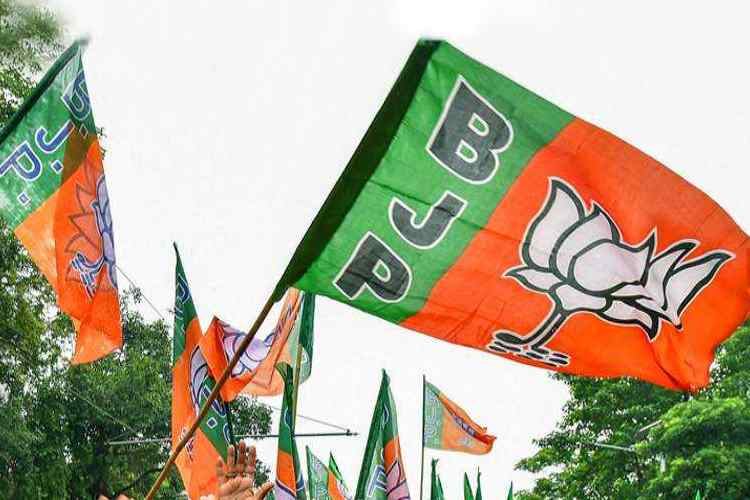 BJP has been effective in transmitting its version of Indian history