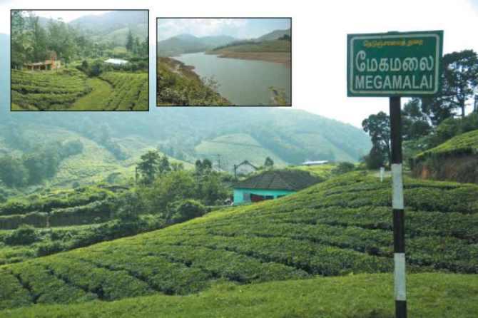 Theni, meghamalai,hills,overview
