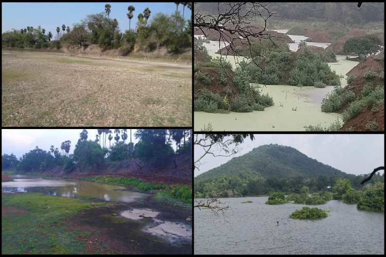 Vandalur zoo lake rejuvenated by IPS officer Sudha ramen,revived lake video goes viral and earns praise for officials : வண்டலூர் எரியை புதிபித்த அதிகாரி