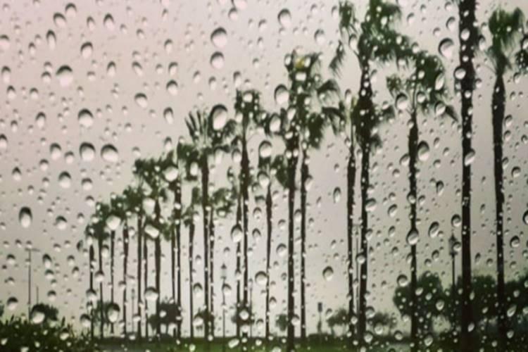 latest weather news latest weather update latest weather report chennai rains chennai weather imd chennai - தொடரும் மழை; சென்னை வானிலை மையம்