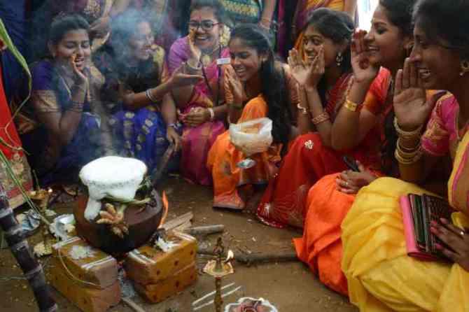 Pongal festival celebrations, pongal 2020, pongal celebrations at women college, பொங்கல் 2020, பொங்கல் கொண்டாட்டம், pongal celebrations in chennai, women College students pongal celebrations, girls pongal celebrations, pongal celebrations, pongal festival