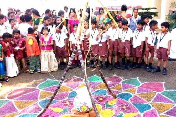 pongal celebrations, pongal article, பொங்கல், பள்ளிகளில் பொங்கல் கொண்டாட்டம், religious departure in pongal celebrations in schools, pongal celebrations in schools