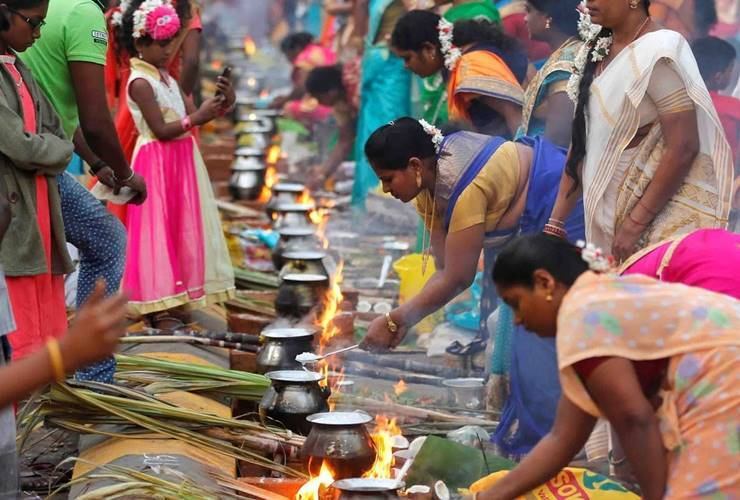 pongal holidays 2020, pongal leave, pongal holidays in Tamil nadu, additional pongal leaves to government staffs, pongal holidays Tamil nadu schools, pongal holidays Tamil nadu college, பொங்கல் 2020, பொங்கல் விடுமுறை,