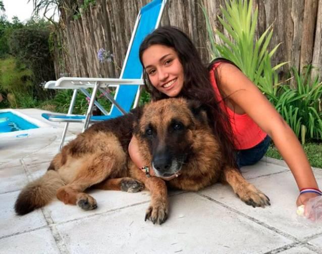 Teen's photoshoot goes wrong when dog bites face leaving her 40 stitches - நாயுடன் செல்பி எடுக்க ஆசைப்பட்ட இளம் பெண் - முகத்தில் 40 தையல்