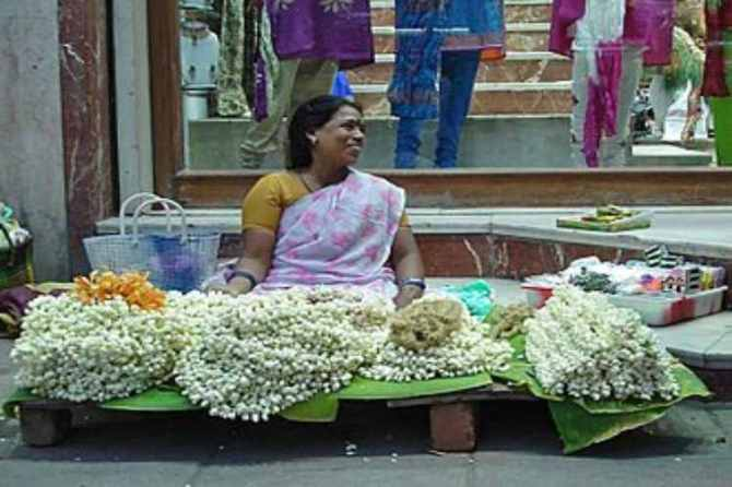 jasmine price skyrockets due to pongal demand