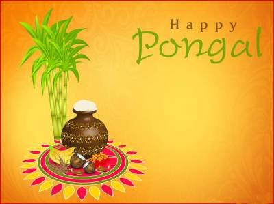Pongal 2020 Wishing everyone very happy pongal