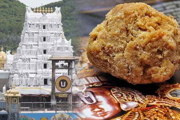 Tirupati, Tirupati News, Tirupati News In Tamil, Tirupati laddu, laddu prasadam, free laddu, TTD, Tirupati Chennai News, Tirumala Tirupati, Tirumala Tirupati Devasthanams