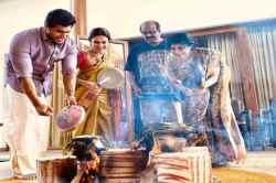 pongal. pongal2020, pongal celebration, rajinkanth, soundarya rajinikanth, kattil movie, shrusti donge, pongal , jallikattu, madurai,