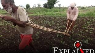 Crop insurance changes
