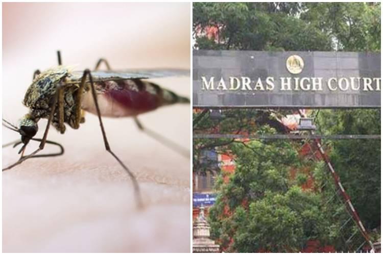 dengue, corona virus, chennai corporation action sufficient, டெங்கு, கொரோனா வைரஸ், சென்னை மாநகராட்சி, madras high court question