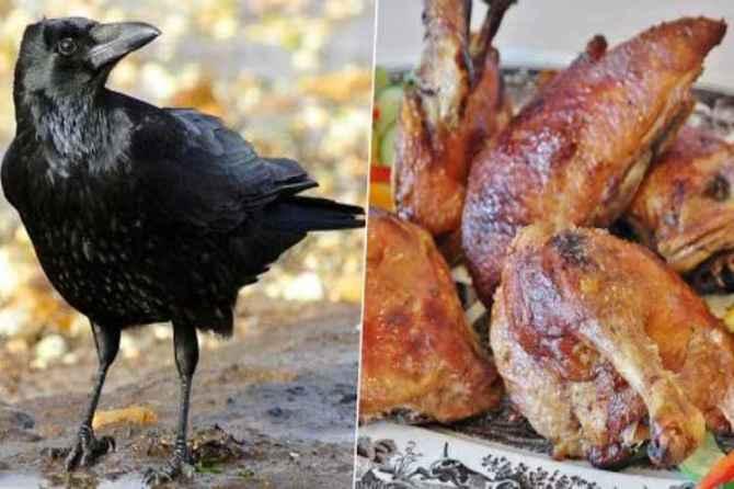 rameswaram, chicken, crow meat, sale, police, arrest, ramanathapuram
