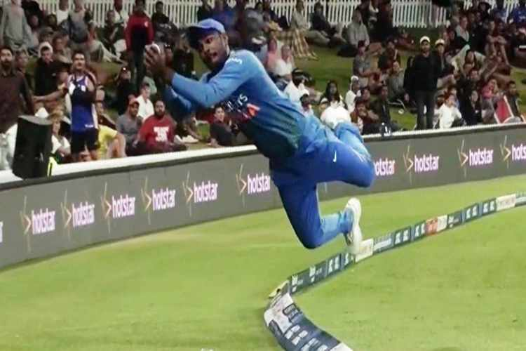 sanju samson, india vs new zealand, sanju samson dive, sanju samson dive catch, india vs new zealand 5th t20i, cricket news