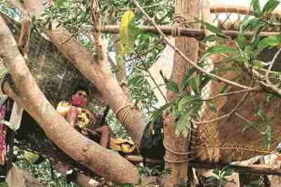 coronavirus outbreak, india lockdown, quarantined on tree, west bengal, west bengal village, covid-19, kolkata news, tamil indian express news