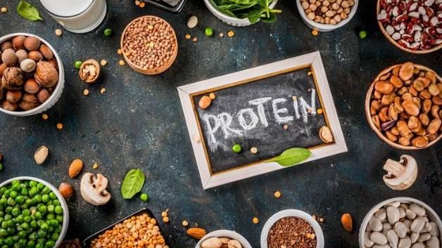 corona virus protein foods covid 19