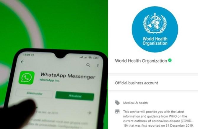 Coronavirus outbreak WHO now in Whatsapp, Whatsapp, WHO whatsapp, whatsapp news, World health organisation,